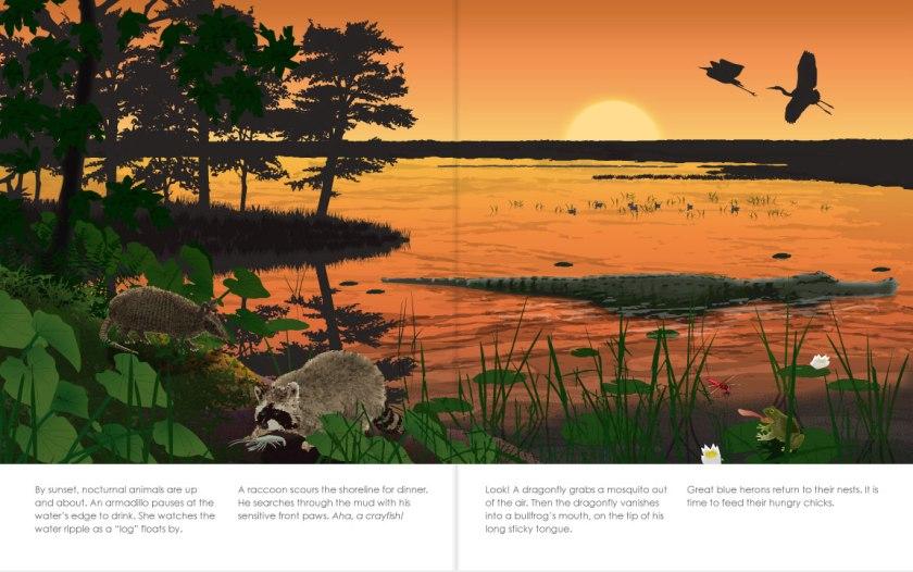 Sunset-Swamp